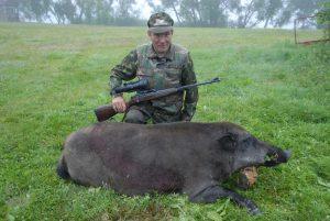 Охота на кабана в Беларуси