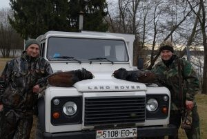 Capercaillie hunting in Belarus.